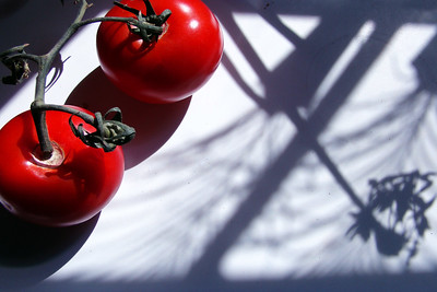 16 Shadows and Two Tomatoes
