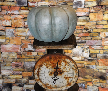 The Blue Pumpkin and Old Rustic Scale