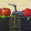Still Life 3 - Pomegranate