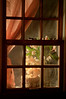 CAS_9989_90_fused_window