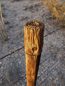 Fence post with character, New Mexico