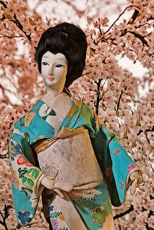The Geisha and Cherry Blossoms