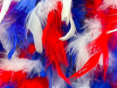 Patriotic Feathers