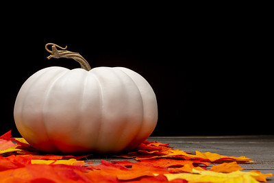 White Pumpkin and Autumn Leaves