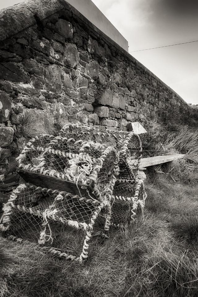 Irish fish trap