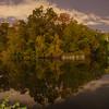 Central Park,  Night shot. 20 sec at f/4.0. 5032 x 3405