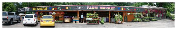 Lyons Farm Market_Panorama1