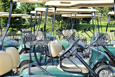 Golf Carts - 4 x 6