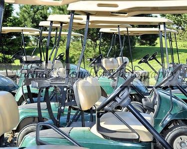 Golf Carts - 8 x 10