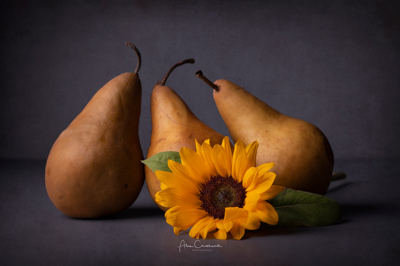 Pears and sunflower