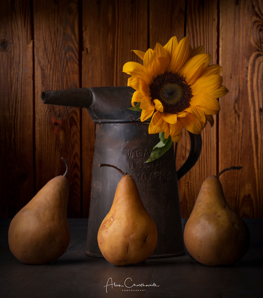 Pears and rusted watering can