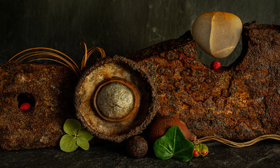Still Life with Stone, Steel and Pine Needles