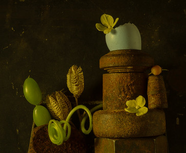 Still Life with Eggshell, and Cucumber Tendril