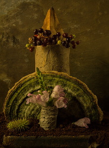 Still Life with Mushroom and Berries