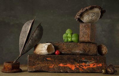 Still life with Barnacle and Bottle Cap