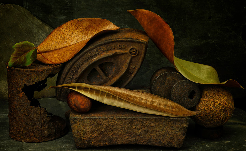 Still Life with Iron, Tin Can &  Magnolia Leaves