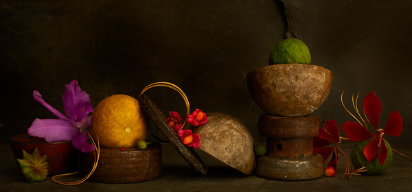 Still Life with Pine Needles and Lemon
