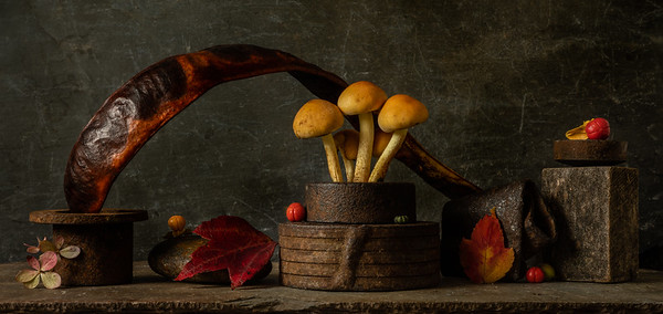 Still Life with Mushrooms, Steel and Wood