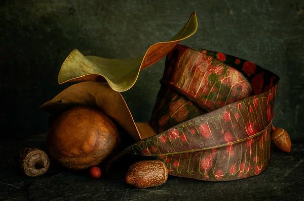 Still Life with Tropical Leaf
