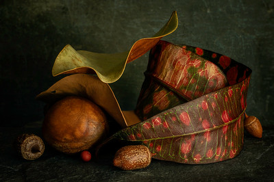 Still Life with Tropical Leaf
