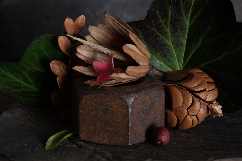 Still Life with Magnolia Fruit and Ivy