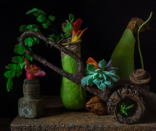 Still Life with Pitcher Plants and  Scissor (Summer 18  #39)