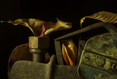 Still Life with Farm Tools