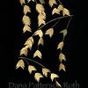 chasmanthium latifolium #3 (river oats)