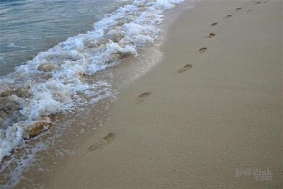 Footprints in the sand (Small)
