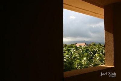 A view from the window (Small)