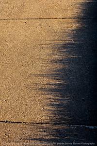 015-shadows-ankeny-11apr21-08x12-008-400-0785