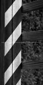 023-shadows-warren_co-15sep07-1361