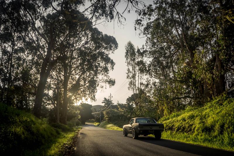 Morning Drives