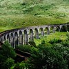 Glenfinnan viaduct (west hillside 13E) - 03