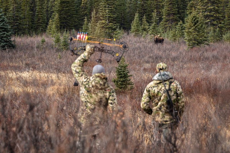 Moose decoy improv. British Columbia.