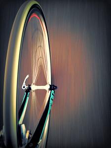 Wheelz in Motion