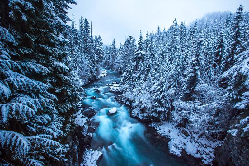 Winter Enchantment