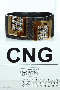 CNG Promo image