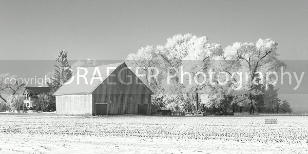 Frost 2013-10_canvas_B&W