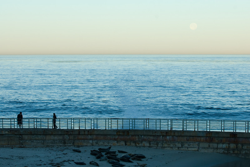 La Jolla Full Moon over the Children's Cove_-42