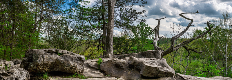 024-Cedar-Bluffs-Nature-Preserve-Panoramic-Indiana-Lee-Mandrell-Spring