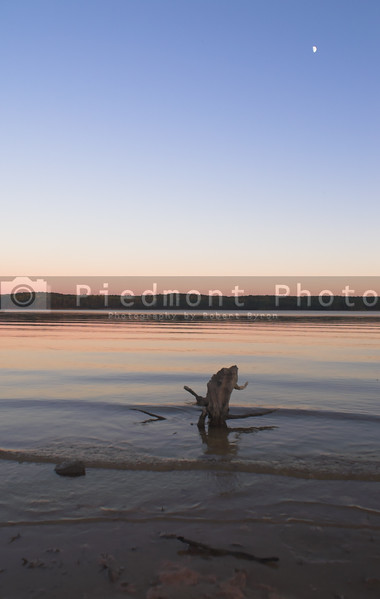 Driftwood in a lake at sunset with the moon rising.