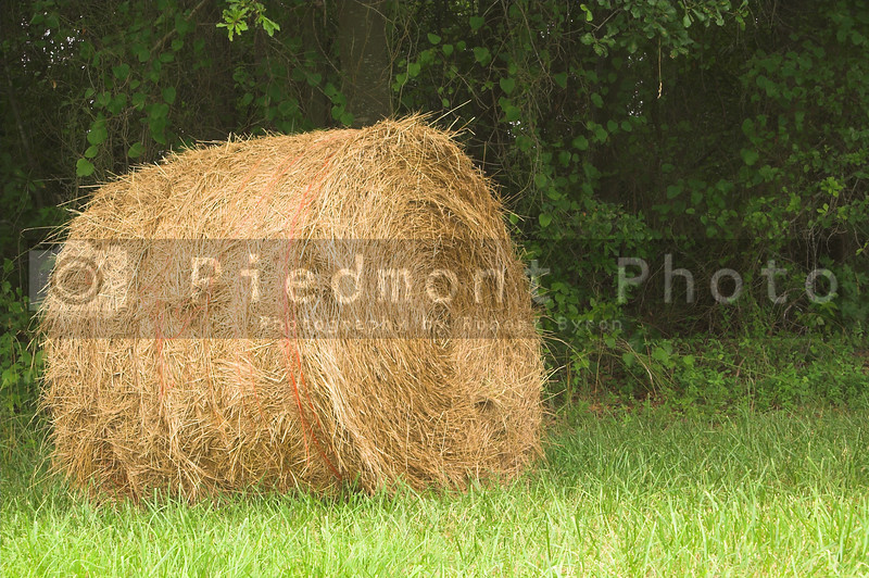 A field with a bale of wheat hay.