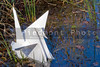 A paper oragami crane in a body of water.