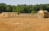 Large bales of freshly cut wheat hay.