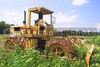 An abandoned bulldozer sitting in a field of weeds.