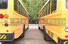 A row of school buses in a parking lot.