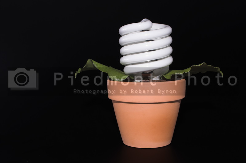 A fluorescent light bulb growing in a pot.