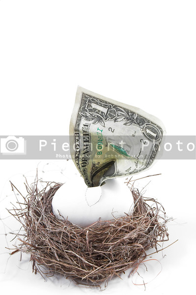 A dollar bill hatching from an egg in a nest.