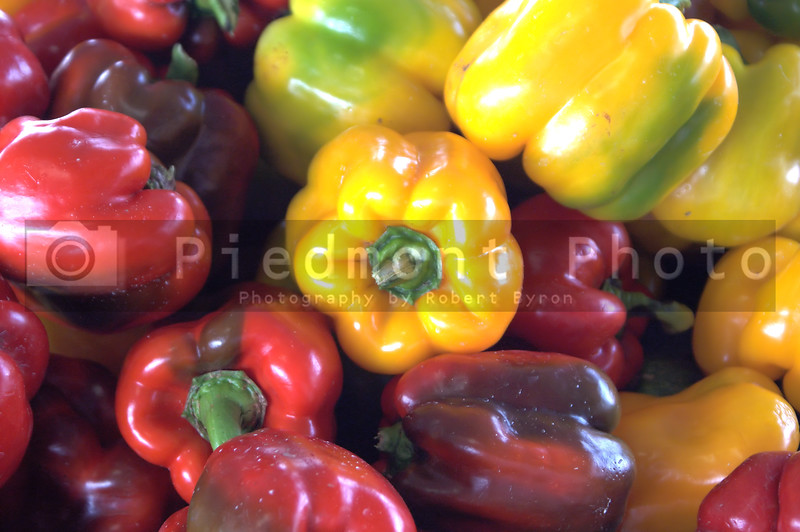 An assortment of very colorful fresh bell peppers.